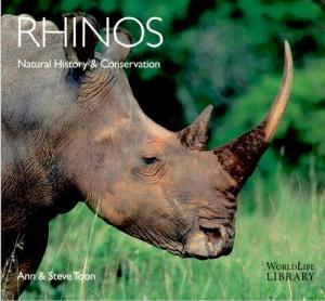 Rhinos by Ann & Steve Toon